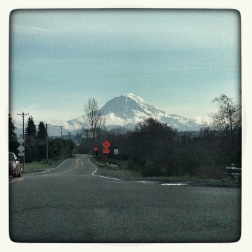 Mt. Rainier finally made an appearance.
